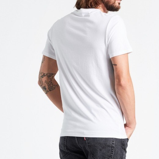 Levis Graphic Sentin Neck Tee Palm-02